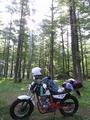[バイク][キャンプ]美山キャンプ場