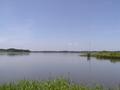 [湖沼]印旛沼