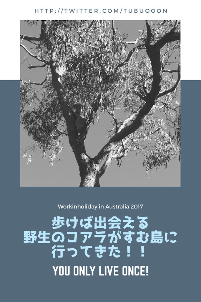 f:id:Jtshohei:20170620181731p:image