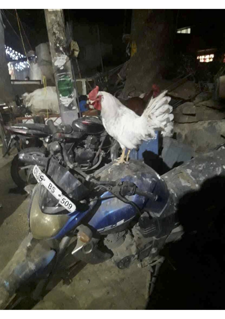 f:id:Jugaad-INDIA:20161207025714j:plain