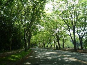 f:id:JunMitani:20080502001352j:image
