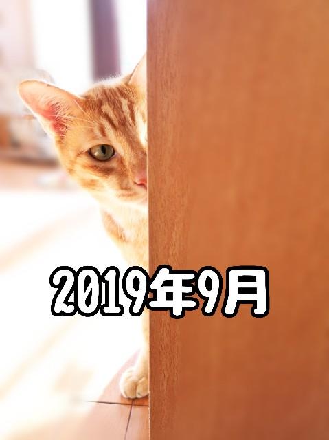 f:id:JuneNNN:20191229214921j:plain