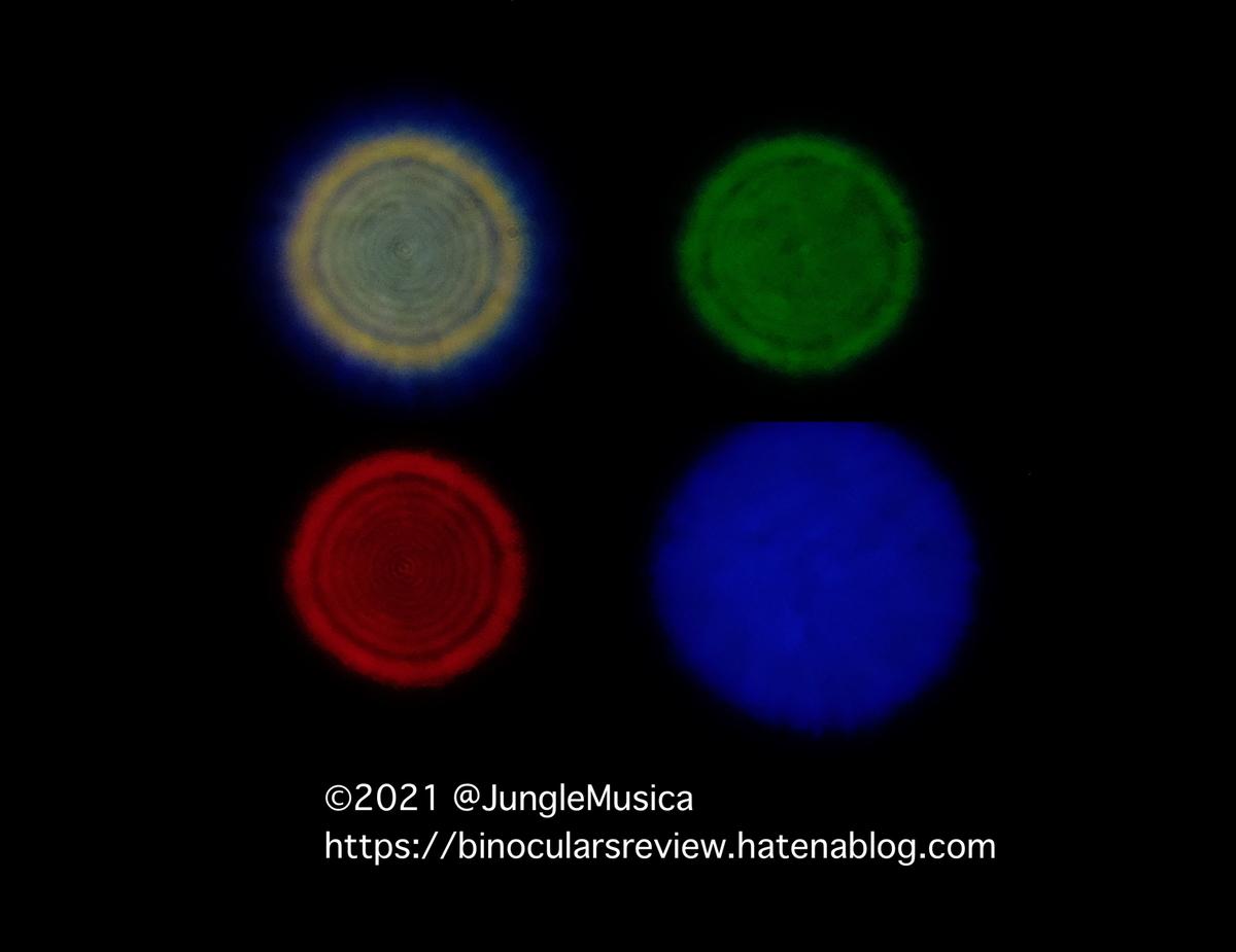 f:id:JungleMusica:20210718203852j:plain