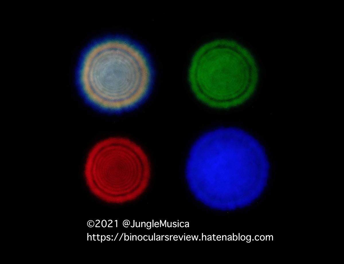 f:id:JungleMusica:20210801135755j:plain