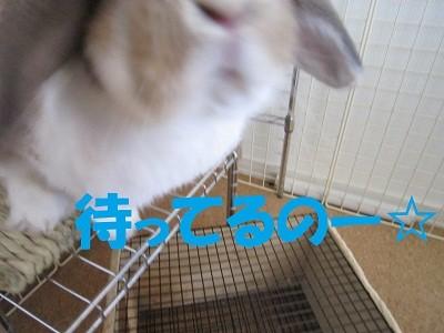 f:id:Juniffy:20100501142521j:image