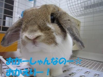f:id:Juniffy:20100725212622j:image