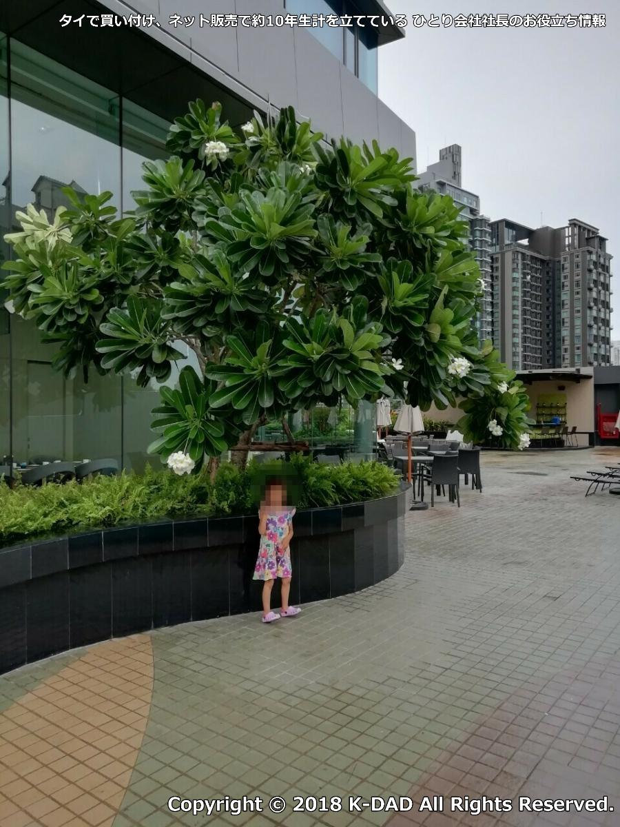 ホテルニッコー・バンコク 宿泊レビュー その2 ~K-DAD タイで買い付け、ネット販売で約10年生計を立てている ひとり会社社長のお役立ち情報