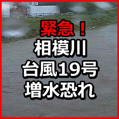 f:id:KAMP-Yokohama:20191012154703j:plain