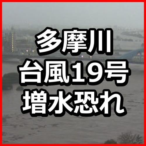 f:id:KAMP-Yokohama:20191012170758j:plain