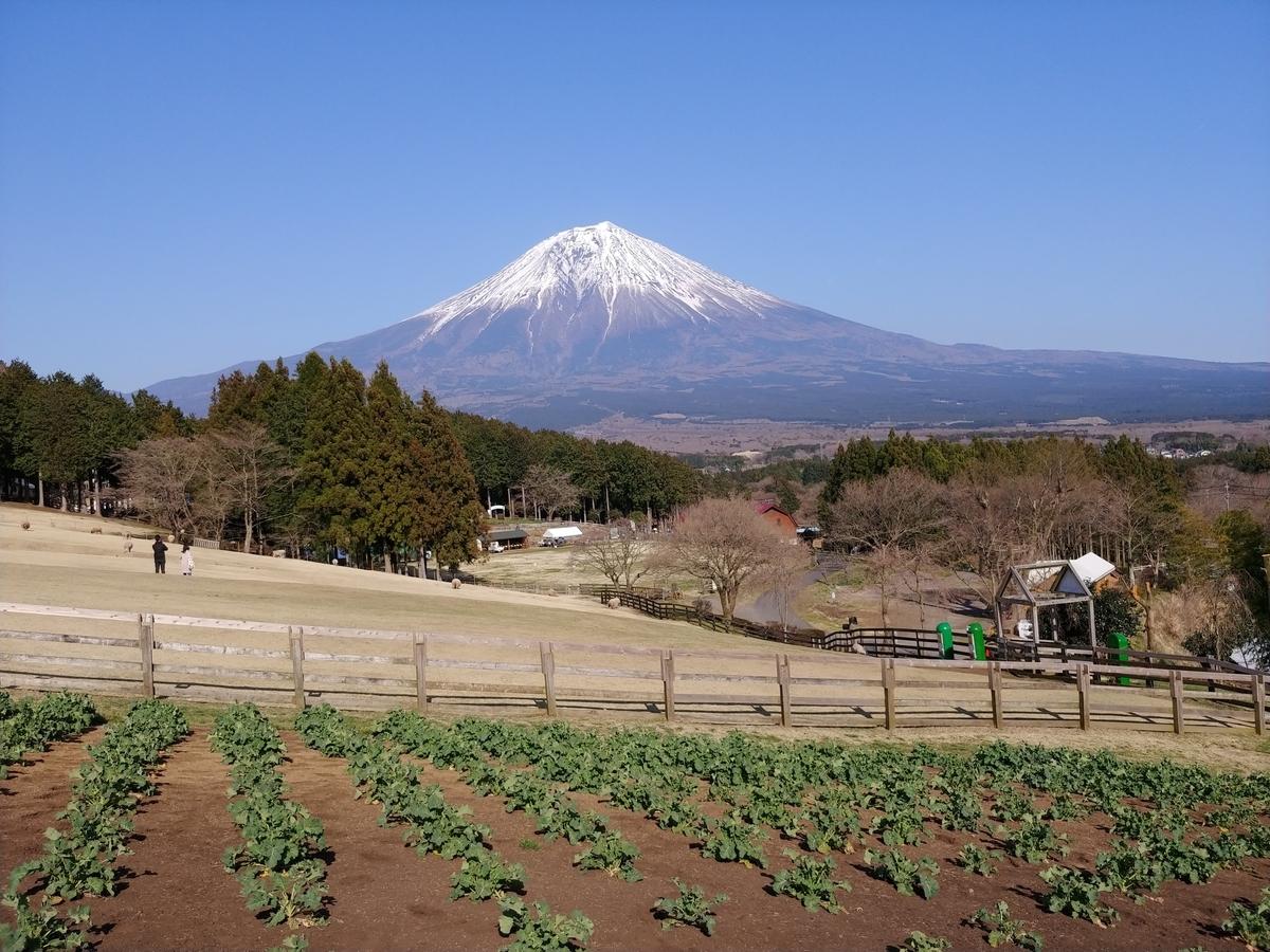 f:id:KAMP-Yokohama:20200503034838j:plain