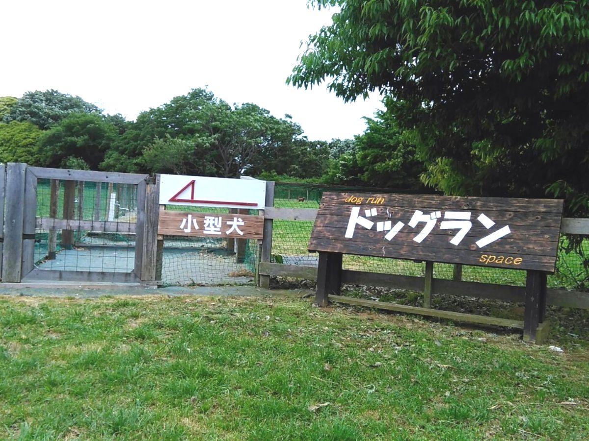 f:id:KAMP-Yokohama:20200518061345j:plain