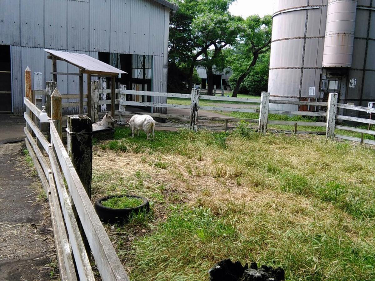 f:id:KAMP-Yokohama:20200518061611j:plain