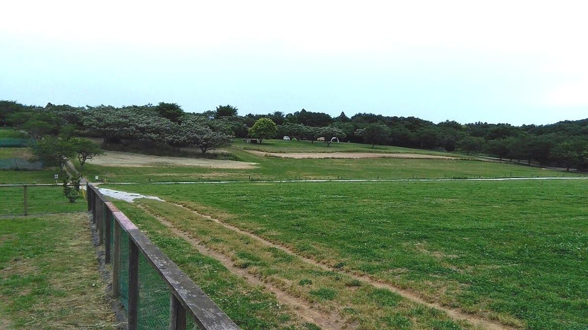 f:id:KAMP-Yokohama:20200518102442j:plain