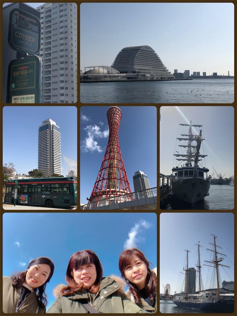 f:id:KAWACOJI:20190216001301j:image