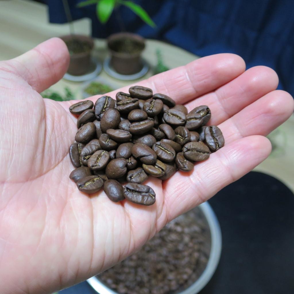 焙煎した珈琲豆