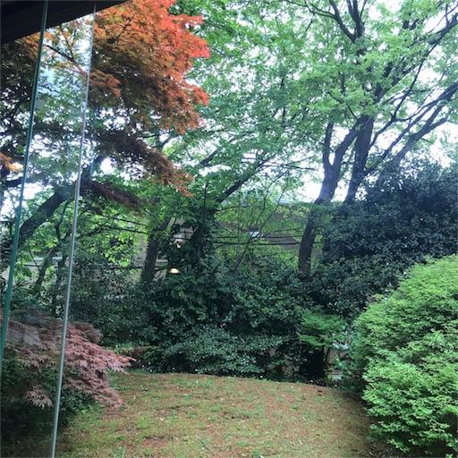 蔦珈琲店の中庭の風景