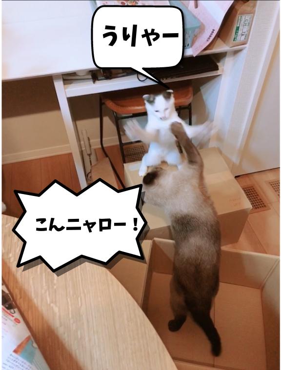 f:id:KH-yakudachi:20210422013057p:plain