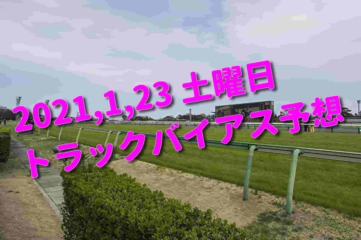 f:id:KITANOKURIGE:20210121153607j:plain