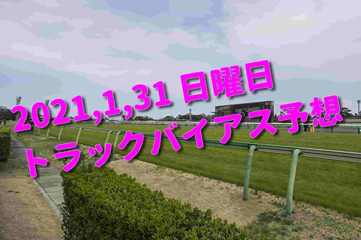 f:id:KITANOKURIGE:20210127222131j:plain