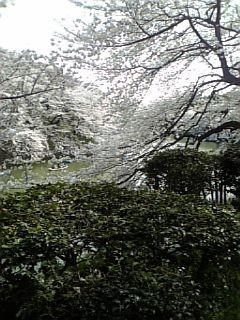 f:id:KJ-monasouken:20080330223659j:image