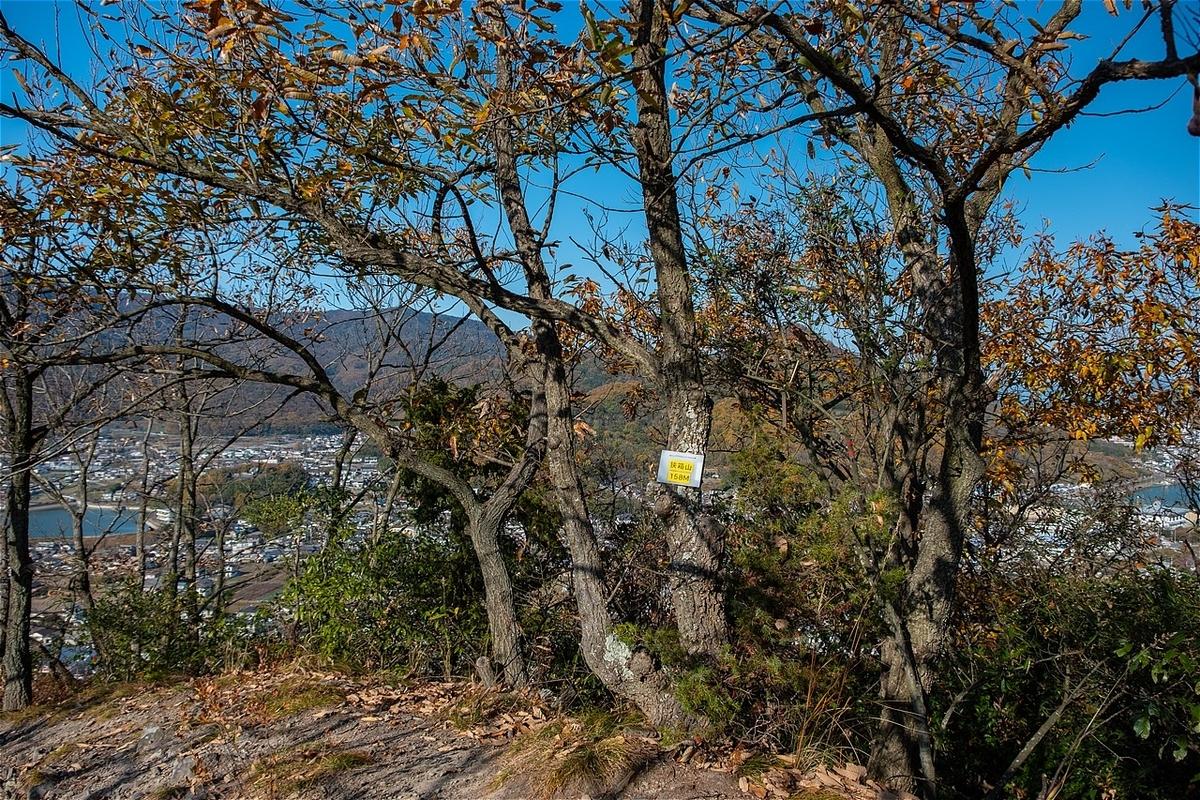 f:id:KOTARO-PARADISE:20201210150212j:plain