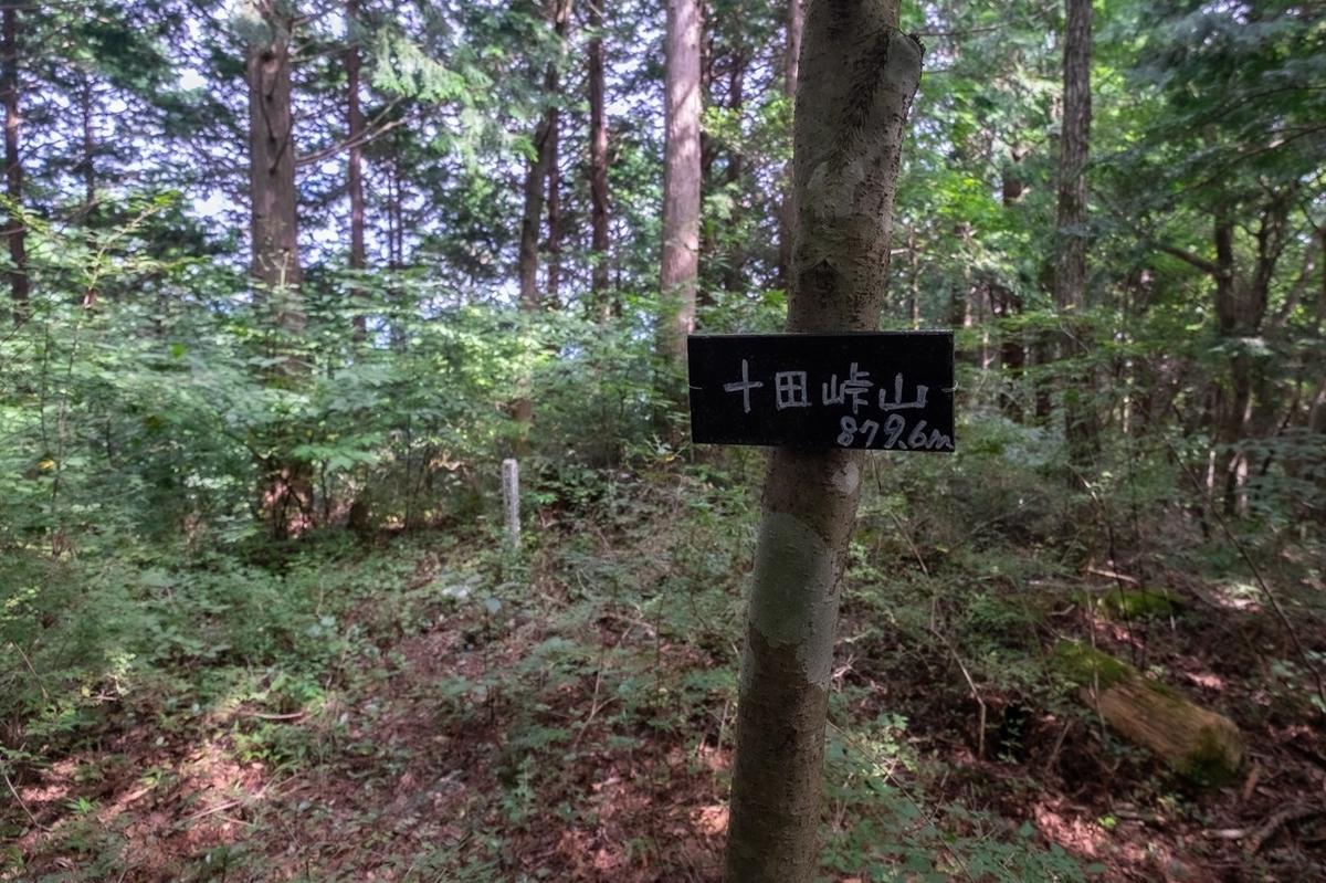 f:id:KOTARO-PARADISE:20210906174230j:plain