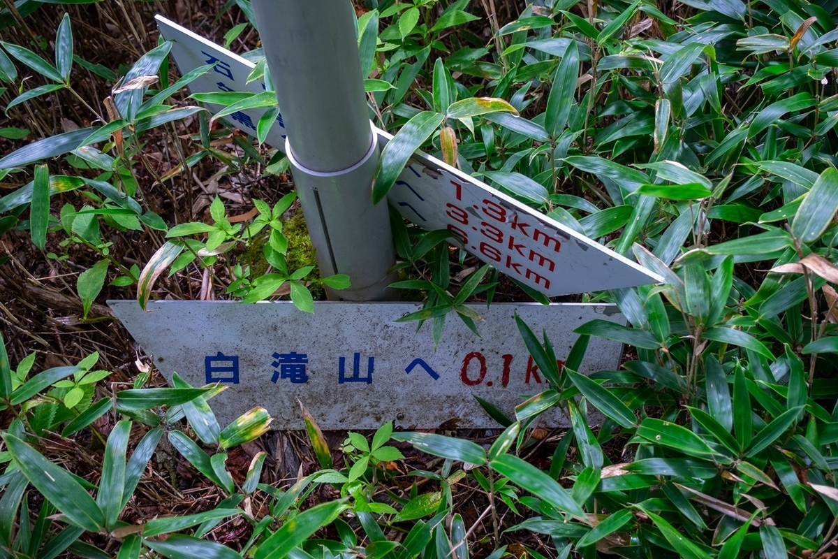 f:id:KOTARO-PARADISE:20210927173043j:plain