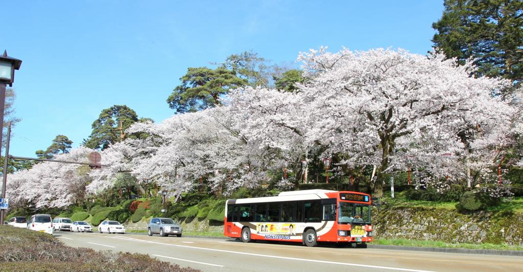 桜満開の百間堀(お堀通り)を行く城下まち金沢周遊バス右回り