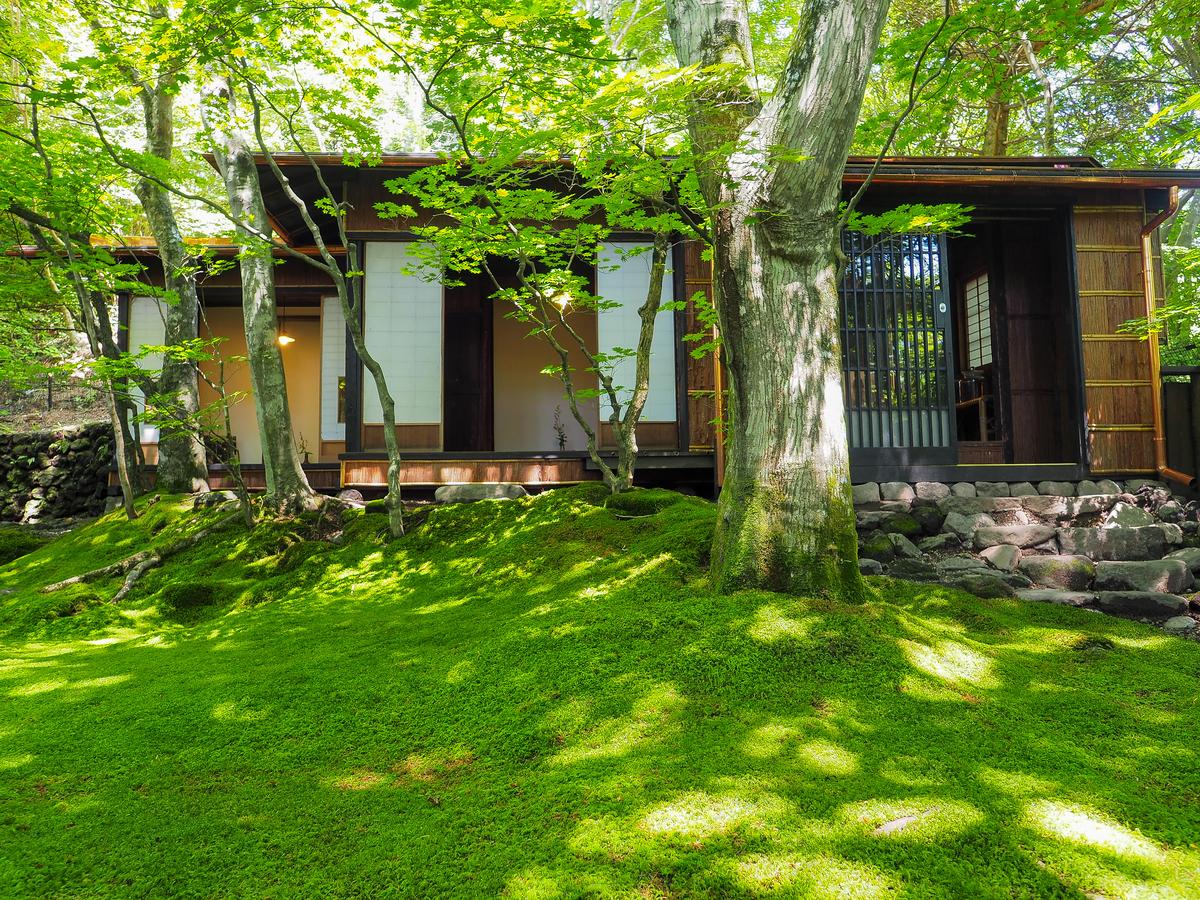 軽井沢の室生犀星記念館(室生犀星旧居)にある,見事な苔の庭