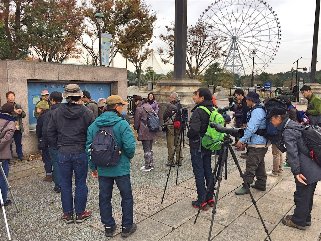 f:id:KYOEI-TOKYO:20161128074911j:image