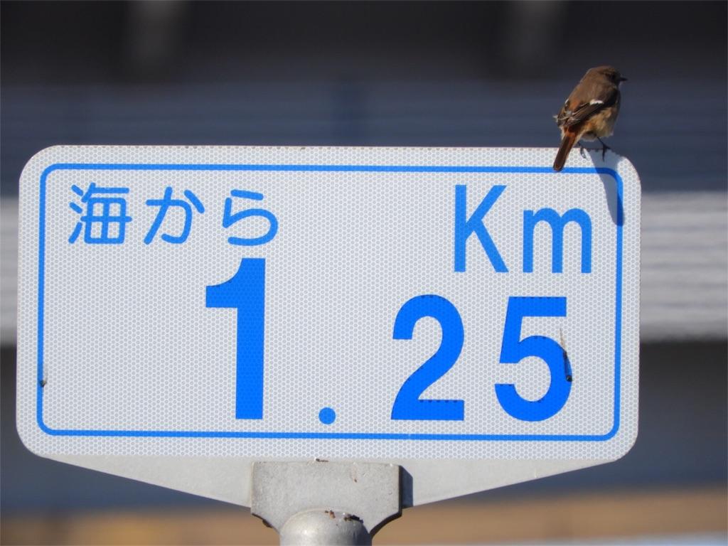 f:id:KYOEI-TOKYO:20180114195719j:image