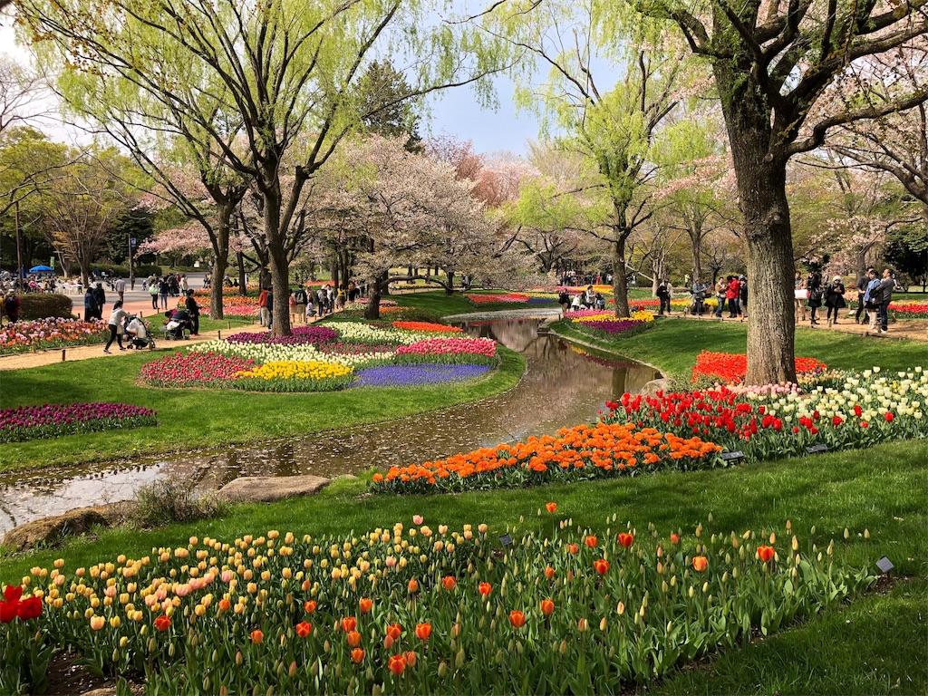 f:id:KYOEI-TOKYO:20190414165129j:image