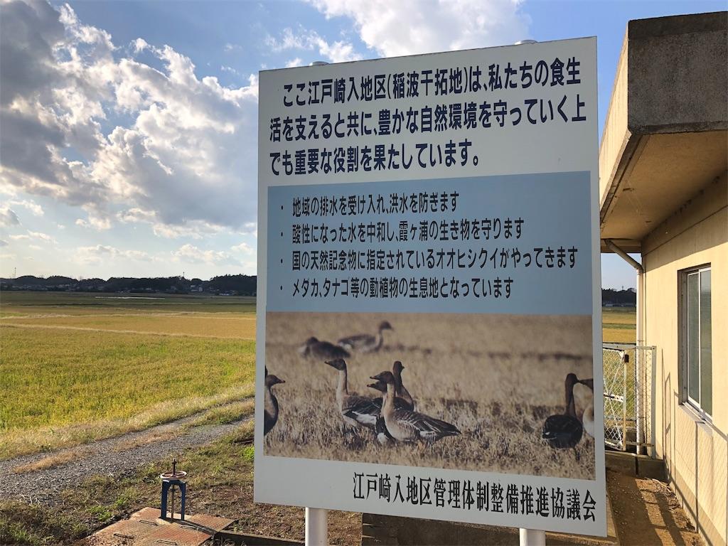 f:id:KYOEI-TOKYO:20191104180619j:image