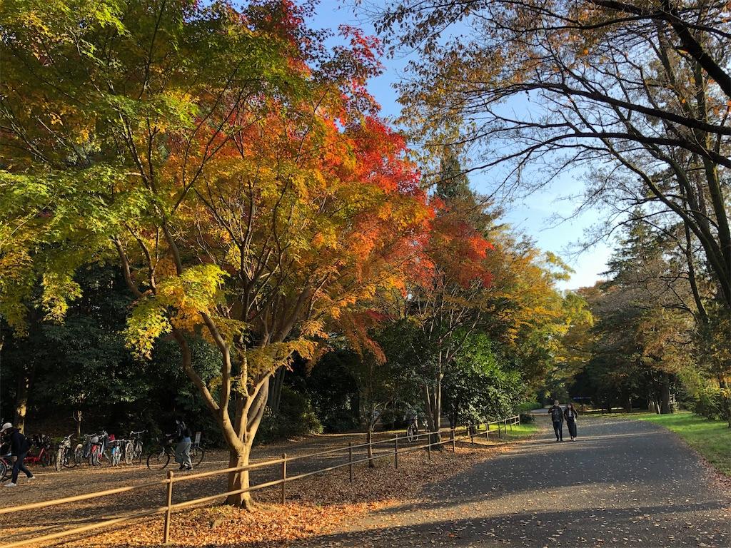 f:id:KYOEI-TOKYO:20201123120808j:image