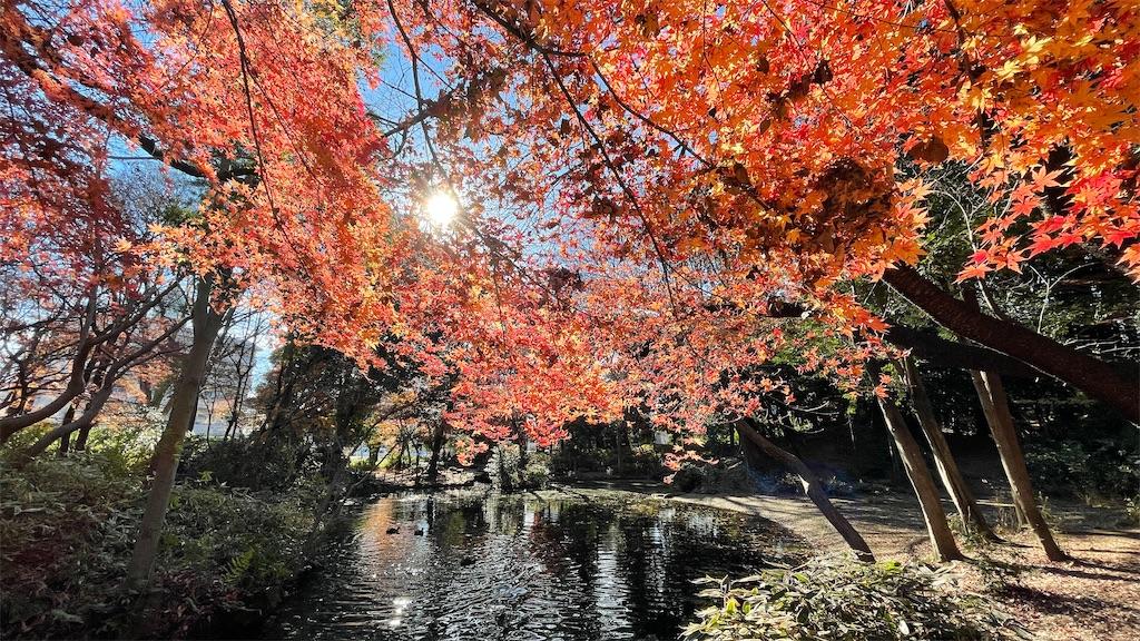 f:id:KYOEI-TOKYO:20201226223639j:image