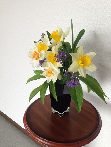 写真 2014-04-28 13 39 03