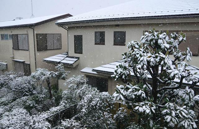 3月末の都内近郊の雪景色