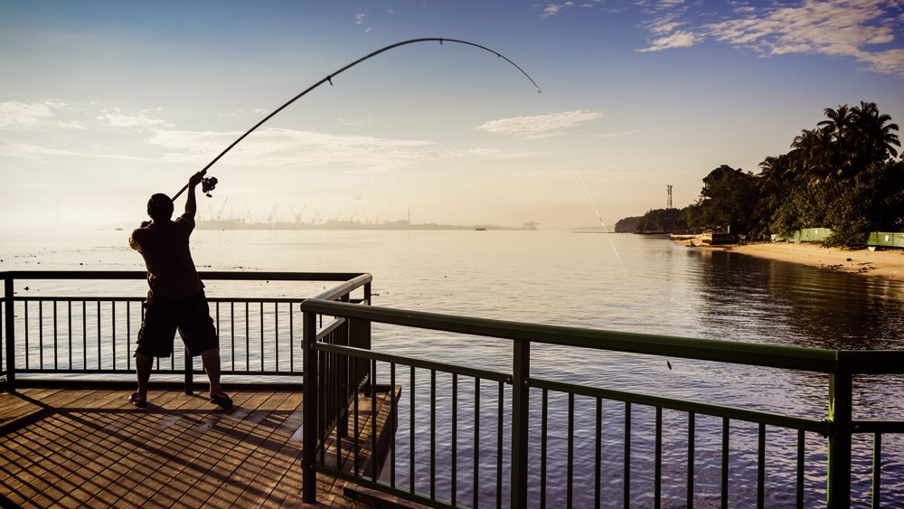 f:id:Kaede-Fishing:20161009203859j:plain
