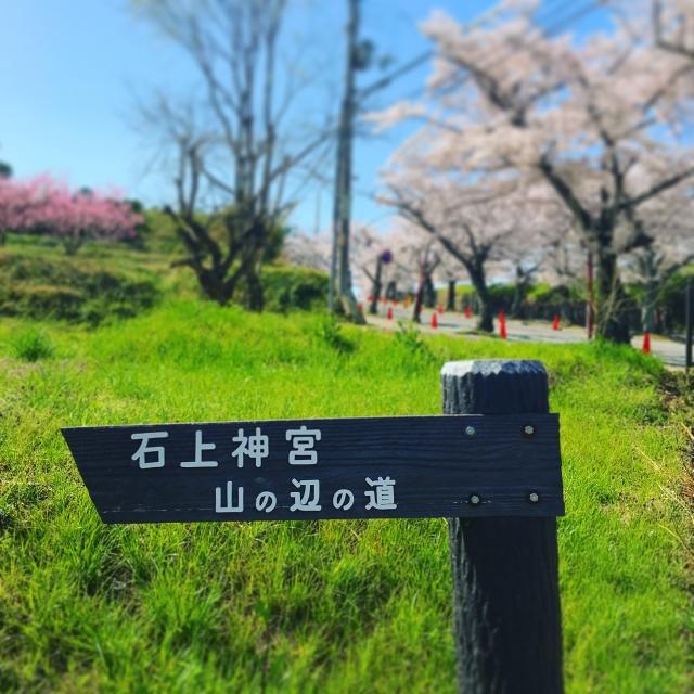 f:id:Kaimotu_Hatuji:20190416094955j:plain
