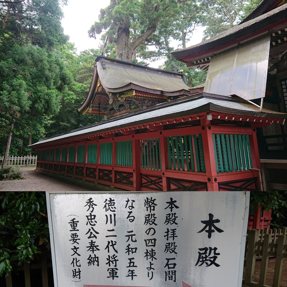 f:id:Kaimotu_Hatuji:20190520090444j:plain