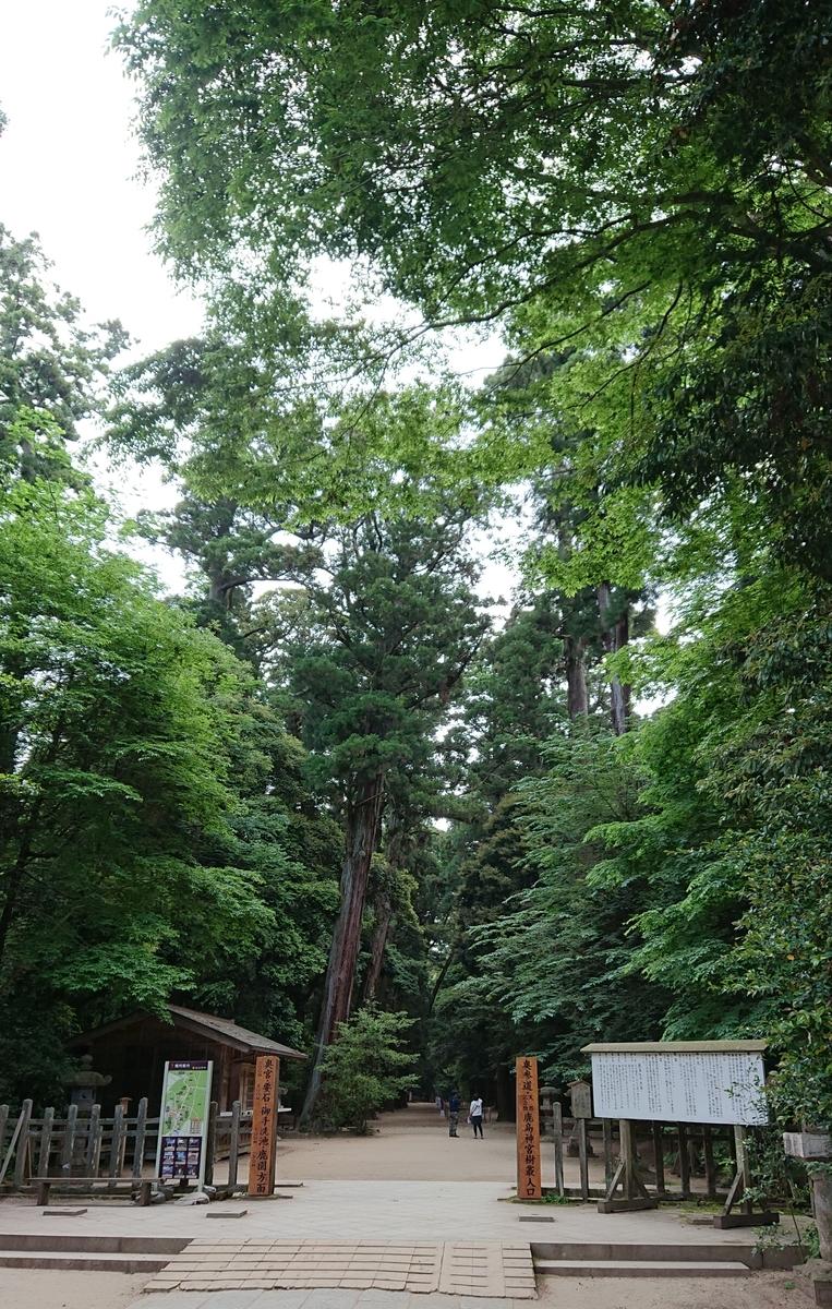 f:id:Kaimotu_Hatuji:20190520120034j:plain