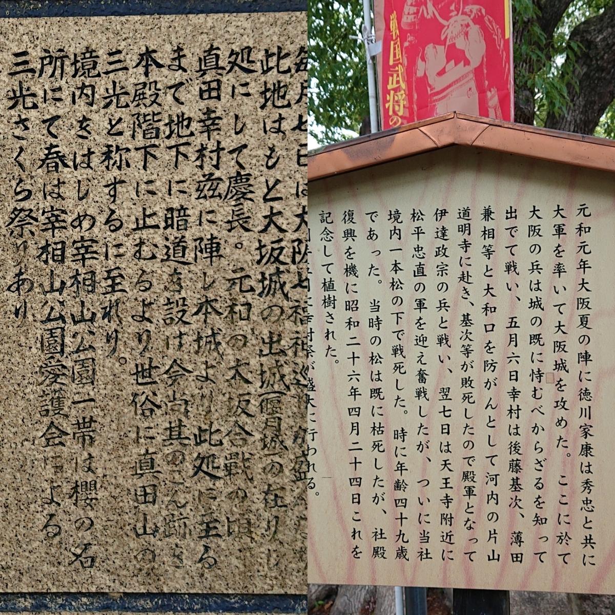 f:id:Kaimotu_Hatuji:20190528050217j:plain