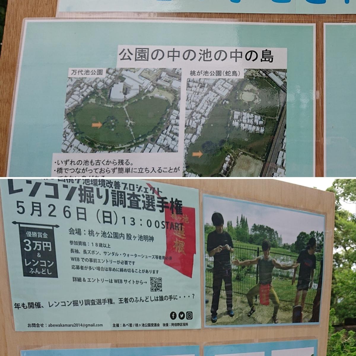 f:id:Kaimotu_Hatuji:20190617185652j:plain
