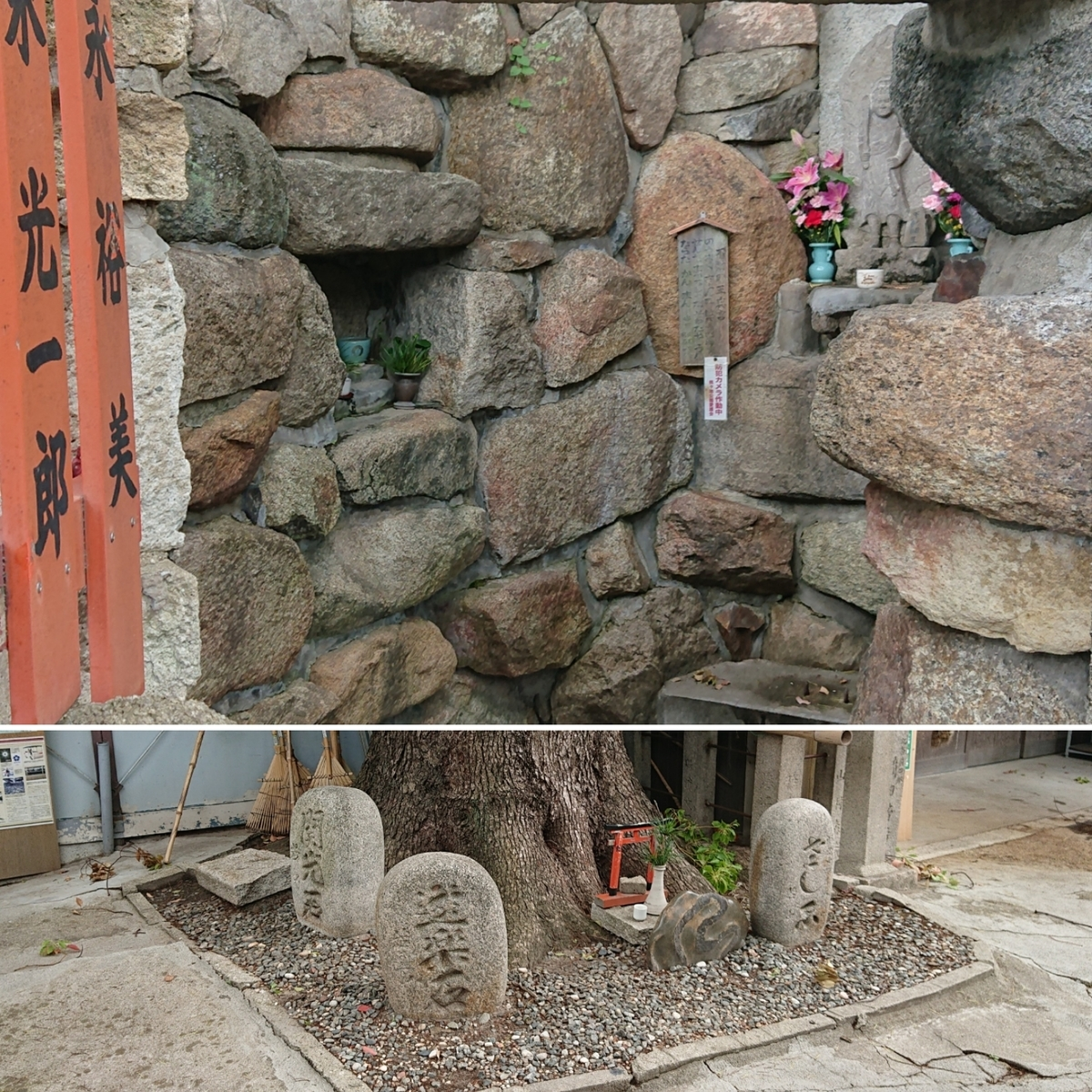 f:id:Kaimotu_Hatuji:20190617185726j:plain