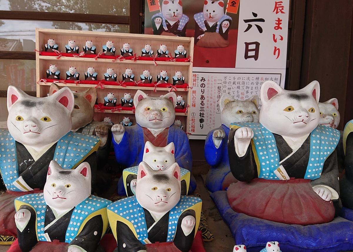f:id:Kaimotu_Hatuji:20190617191053j:plain