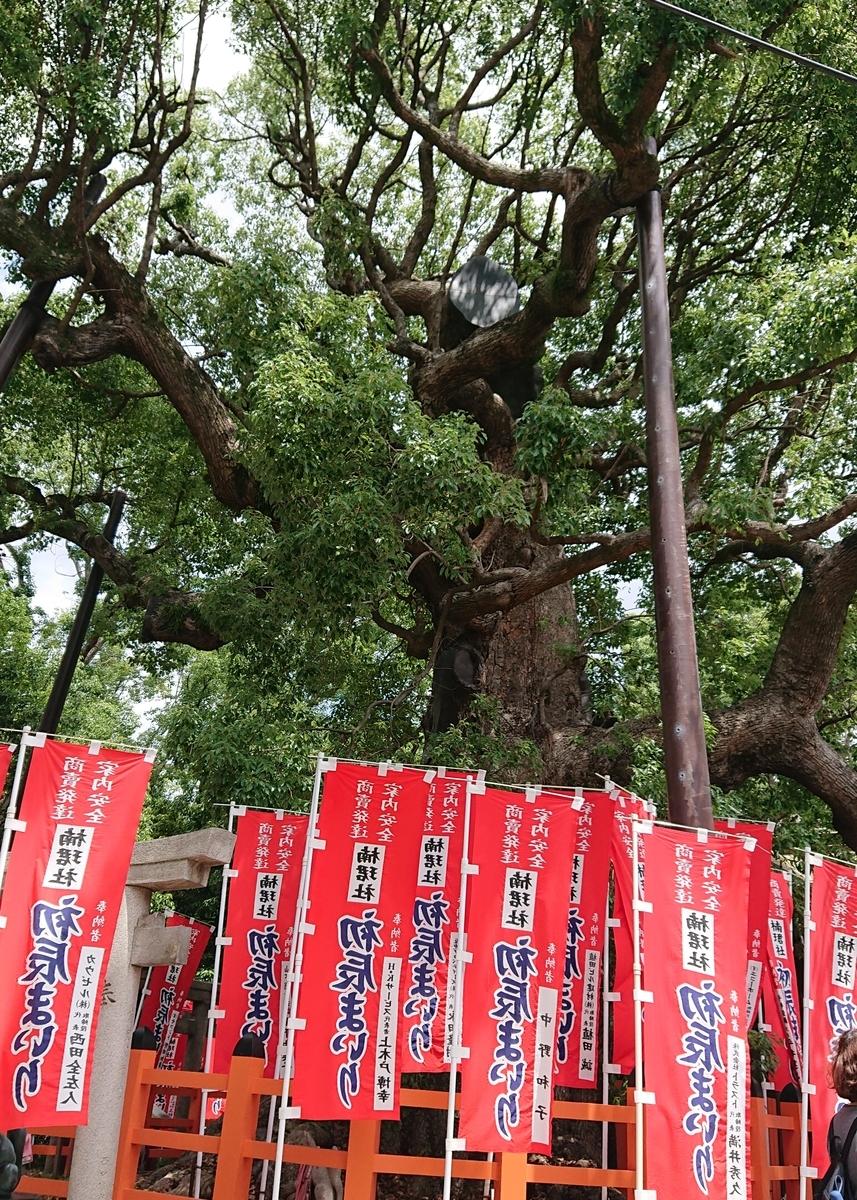 f:id:Kaimotu_Hatuji:20190617191252j:plain