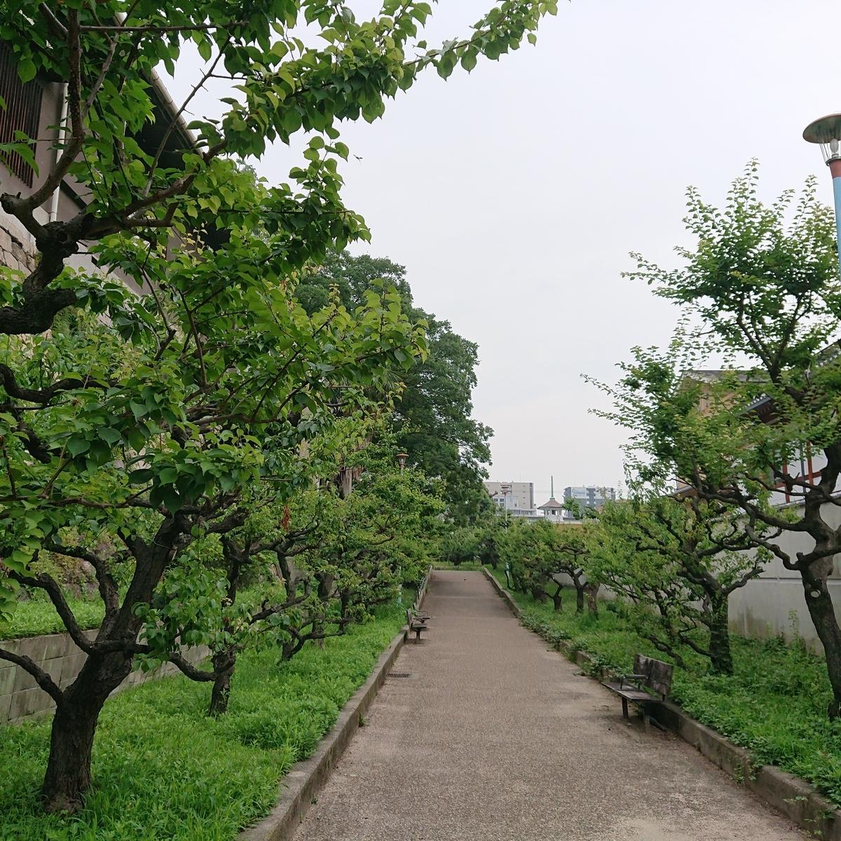 f:id:Kaimotu_Hatuji:20190703203136j:plain