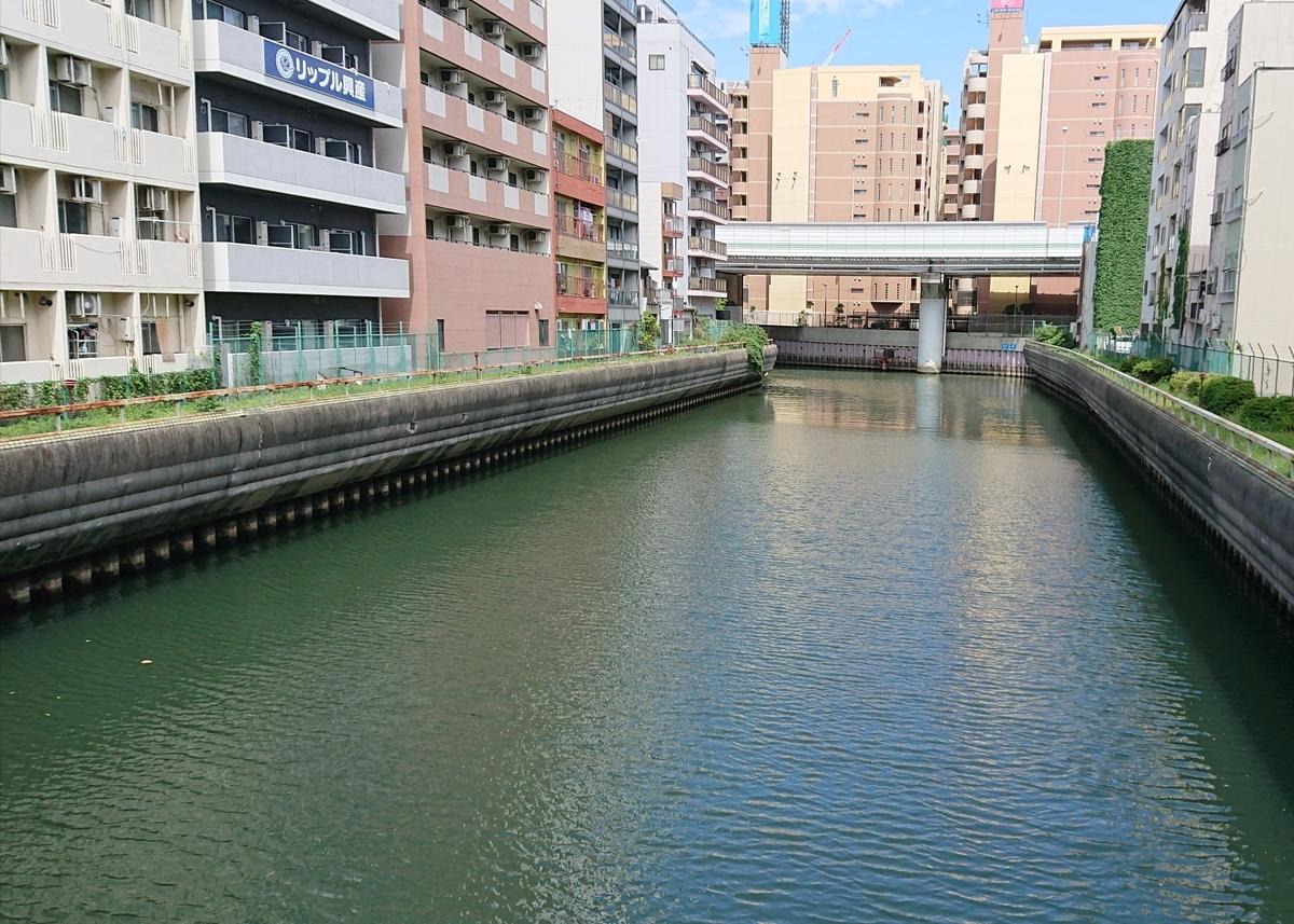 f:id:Kaimotu_Hatuji:20190717094507j:plain