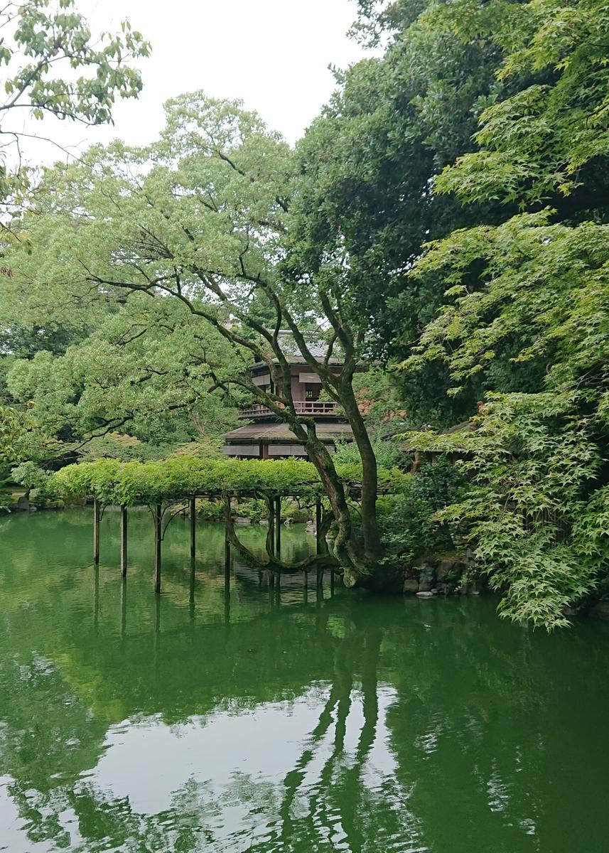 f:id:Kaimotu_Hatuji:20190720204007j:plain