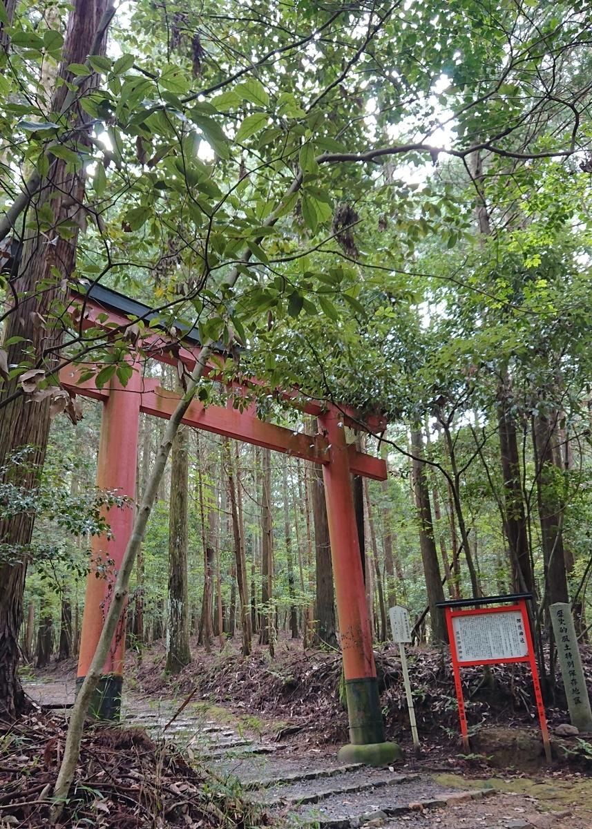 f:id:Kaimotu_Hatuji:20190724121843j:plain